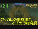 盗賊リンクのゼル伝BOW実況part24