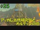盗賊リンクのゼル伝BOW実況part25