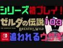 【ゼルダの伝説】シリーズ初見プレイだとこうなる【103日目】