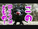 第97位:このロリコンどもめ!【バックベアード様】作ってみた thumbnail
