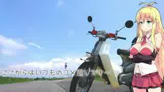 関東甲信越小さなバイク旅【2017】第9回成田山新勝寺②