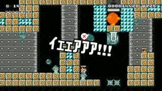 【ガルナ/オワタP】改造マリオをつくろう!【stage:101】
