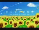 【VY1V4】向日葵と夏模様【オリジナル曲】