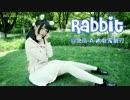 【北辰】Rabbit
