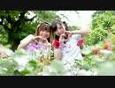 第50位:【りか×みさきち】drop pop candy 踊ってみた【誕生日】【香港×日本】 thumbnail