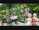 第95位:とある鈴菌の車載動画 -ONE車載- part9 thumbnail