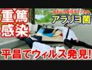 【韓国平昌でウィルス感染】 多数の重篤感染患者!おわったな・・!