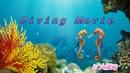 Diving movie3 2017/6/25 2本目
