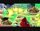 第100位:1750円の高級ラーメン(平井の麺や 騰)①