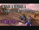 マリオカート8DX 幸流のレート上げの旅 Part53