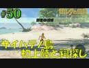 盗賊リンクのゼル伝BOW実況part50
