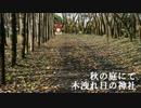 秋の庭にて 木漏れ日の神社.mp4