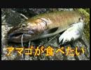 ほーじのアウトドアin高山_アマゴが食べたい編_part1