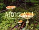 【キノコ狩り_201706XX】 菌類探索記 「梅雨の八丈島大遠征 (前編)」