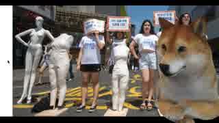韓国女性団体がマネキンのスタイルに文句