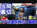 【韓国釜山で慰安婦大騒動】 当局がアレは違反物だと宣言!
