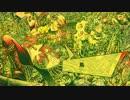 【Lolin】ハイパーゴアムササビスティックディサピアリジーニャス 歌