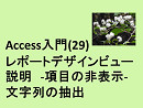 Access入門(29)レポートデザインビュー説明-項目の非表示-文字列の抽出