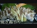 あさひメシ!「超高級魚マハタ!刺身は生より炙った方が美味い説!」