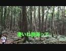 しゃろうに#13 青木ヶ原樹海でアレ探しのスタンドバイミー マジでみつか・・・