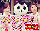 【 #パンダ宮司】ネットやTVで引っ張りだこの有鹿神社へ行ってきた
