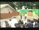 2017/8/14 東武動物公園ワシミミズクガイド(現地撮影)
