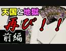 【遊戯王】リア友とオリパ開封~コレクターズ パック2017(前編)~