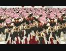 【MMD】アストルフォの軍勢がおねがいダーリン【Fate/Apocrypha】