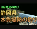 静岡県木負堤防の釣り 8月中旬