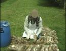 【衝撃映像】ウサギ肉の捌き方.mp4