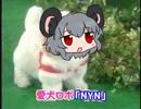 愛鼠ロボ「NYN」