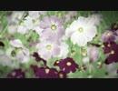 【鏡音リン】 グラスメンタル 【オリジナル】