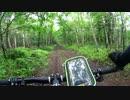 ファットバイク 樽前山林道 part2