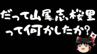 【ゆっくり保守】文春機関砲と味方に攻撃される山尾志桜里