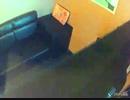 【うたスキ動画】 キュータマダンシング !  【歌ってみた】