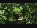 【初音ミク】PortaMystica─ポルタ・ミスティカ─【オリジナル】MV