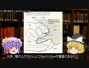 【処女膜・膣】ゆっくり魔理沙と学ぶ夜の生物学4【ゆっくり解説】