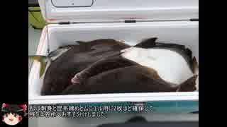 フラットフィッシュの宝庫 仙台湾でヒラメを釣り上げろ!