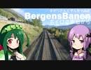 第20位:ボイロの車窓から「BergensBanen」[VOICEROID+旅行]