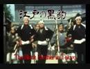 江戸の黒豹 (新五捕物帳)カバー(ロック風)