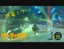 【ゼルダの伝説BW】感電!?水辺に注意!#35【ボソボソプレイ 】