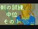 #164【ゼルダの伝説 BOW】ちょっと世界を駆けてくる【実況プレイ】