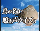 キジバトの鳴き声を聴いてどの位の人が知ってるか調査してみた【鳥の名は。】