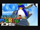 【実況】ナポリの男たちの挑戦 〜スーパーマリオ64DS編〜 Part7 thumbnail