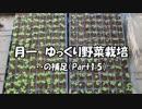 月一 ゆっくり野菜栽培 Part1.5