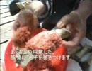 こんがり肉を焼いてみた 【ニコニコ料理祭出品作品】 thumbnail