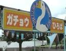 普段のガチョウ広場の様子【東武動物公園】