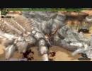 【MHF-Z】第118回G級韋駄天杯 岩竜討伐G! 双剣部門
