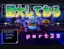 【PS版DQ4】ちょすこ勇者、再び参る!【その25】