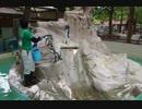 千葉市動物公園のフンボルトペンギンかいせつ